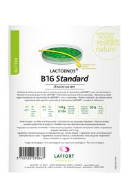 LACTOENOS® B16 STANDARD dawka na 50 hl Bakterie